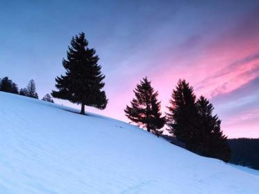 Die beliebtesten Hotels für den perfekten Skiurlaub