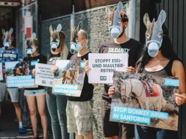 Tierquälerei beim Eselreiten auf Santorini muss verboten werden!