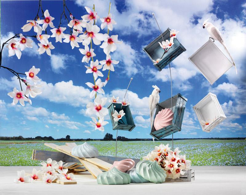 deko fr hjahr sommer deko katalog von woerner bestellen. Black Bedroom Furniture Sets. Home Design Ideas