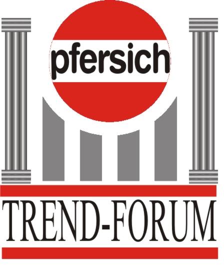 Seminar vom Pfersich Trend-Forum: Aktives Lernen - Spitzen ...